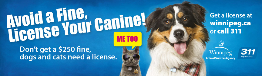 Avoid a fine, license your canine!