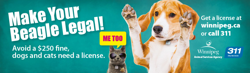 Make your beagle legal!