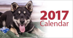 2017 Animal Services Agency Calendar