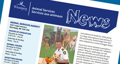 Animal Services Newsletter