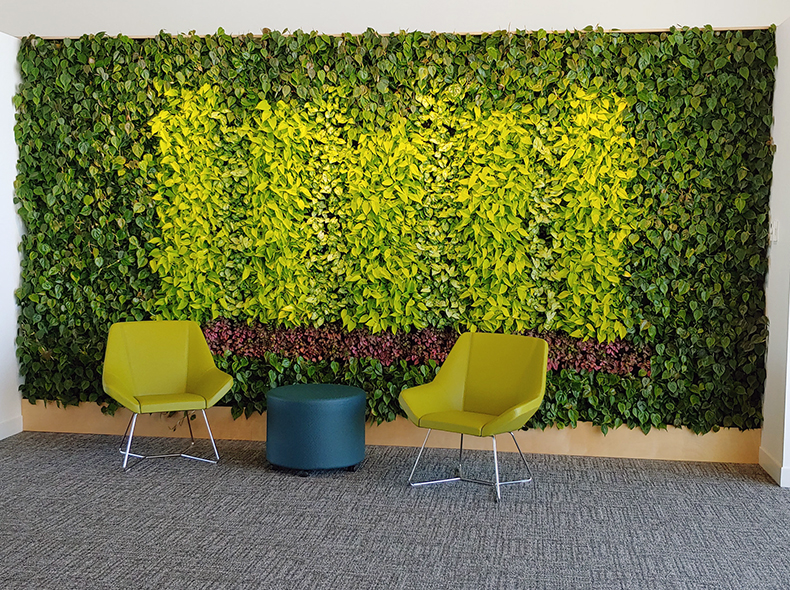 The living green wall at Transcona Library.