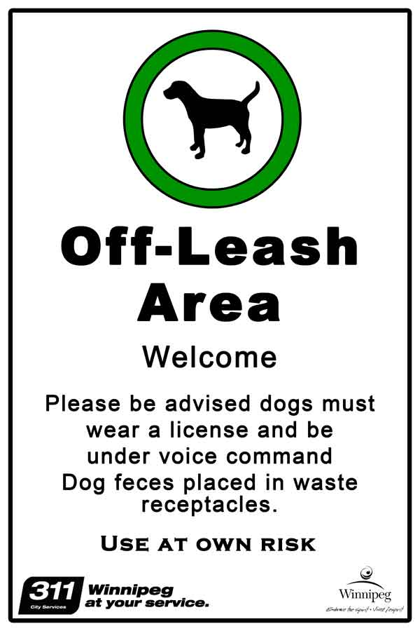 Image result for dogs off leash