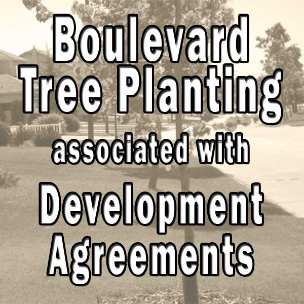 Development Agreement for Boulevard Tree Planting